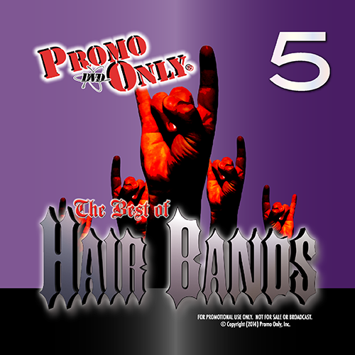 Best Of Hair Bands Vol. 5 Album Cover